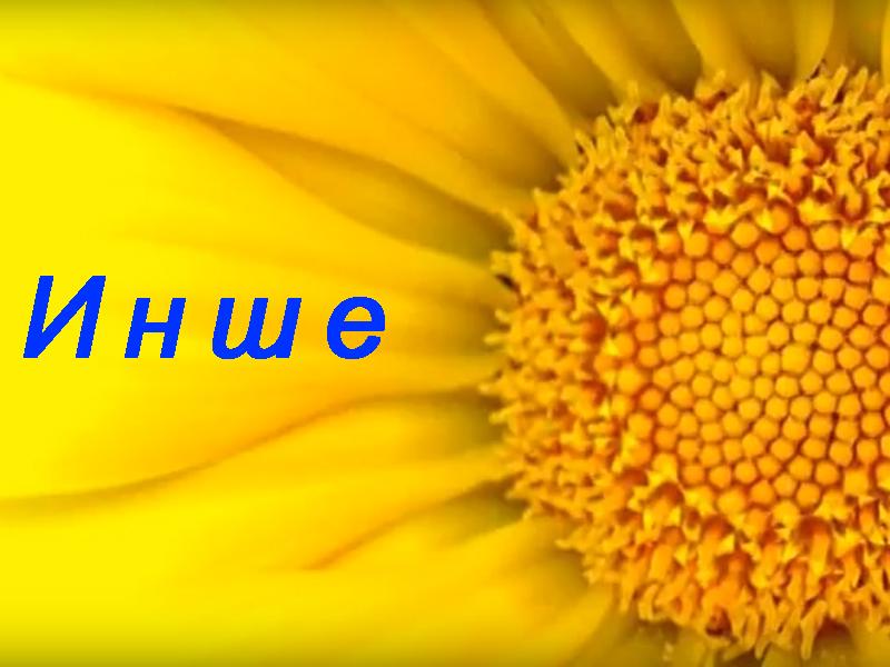 video_ua4